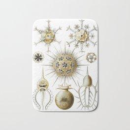 Ernst Haeckel - Phaeodaria Bath Mat