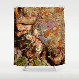 Hermit Anemone Decorator Crab Shower Curtain