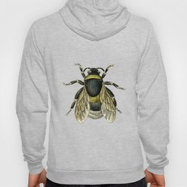 Vintage Bee Illustration Hoody