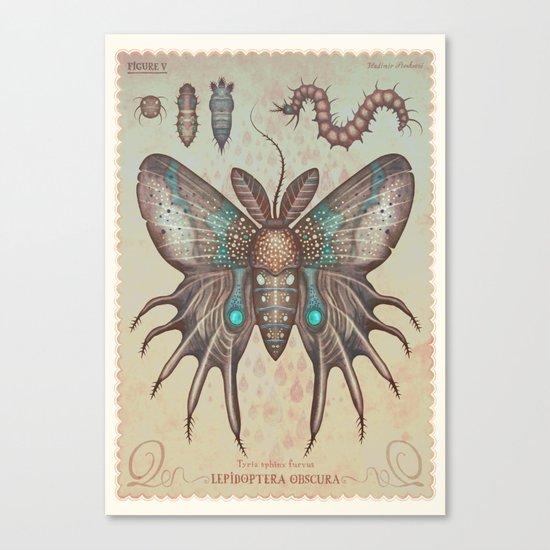 Tyria sphinx furvus Canvas Print