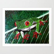 Costa Rica Tree Frog Art Print
