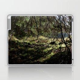 Idyll at the pond Laptop & iPad Skin