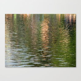 Reflection in a pond Canvas Print