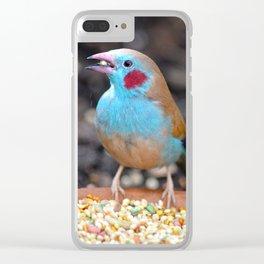 Cordon Bleu Finch Clear iPhone Case