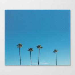 Summer Palms Canvas Print