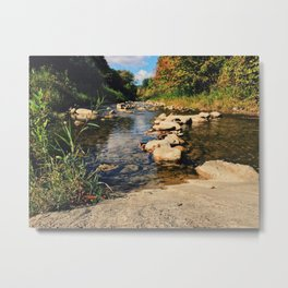 In the middle of the river Metal Print