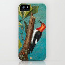 Red Headed Woodpecker with Oak, Natural History and Botanical collage iPhone Case