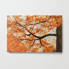 Fall Orange Metal Print