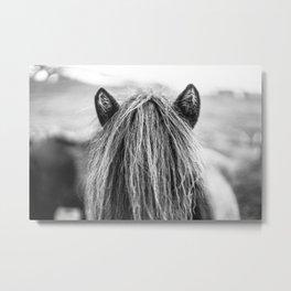 Wild Horse no. 1 Metal Print