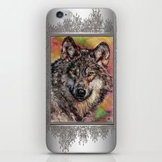 Portrait of a Gray Wolf iPhone & iPod Skin