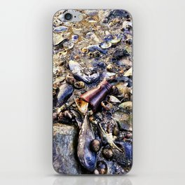 Bottom of the Sea at Low Tide in Casco Bay (1) iPhone Skin
