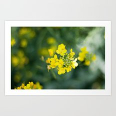 pretty little weeds Art Print