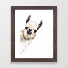 Sneaky Llama White Framed Art Print