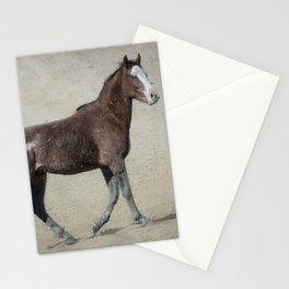 Mud Stockings, No. 2 Stationery Cards