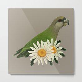 Niam-Niam Parrot Metal Print