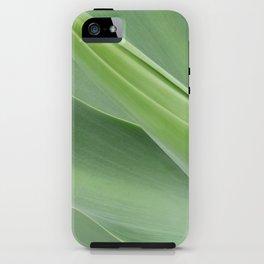 Green Agave Attenuata iPhone Case