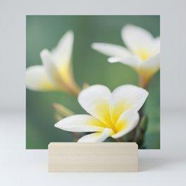 in the happy garden Mini Art Print