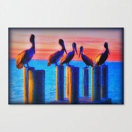 Pelicans Indian River Lagoon Florida 1 Canvas Print