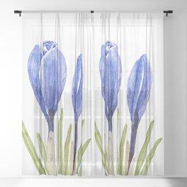 blue crocus buds watercolor painting  Sheer Curtain