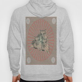 artic fox and the test pattern Hoody