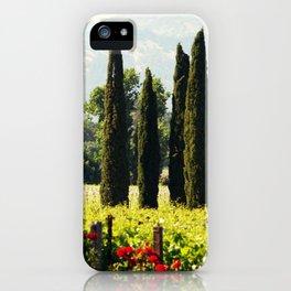 Vineyards of Napa iPhone Case
