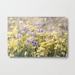 Spring - flowers Metal Print