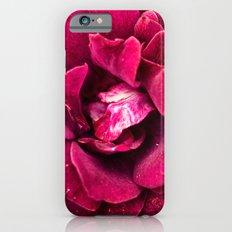 Botanical gardens rose Slim Case iPhone 6s