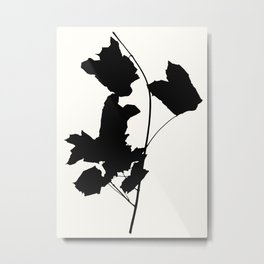 maple 1 Metal Print
