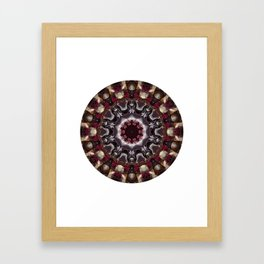 Beauty And The Beet -- A Kaleidoscope Of Beets Framed Art Print