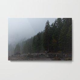 Lake Cushman - Washington Metal Print
