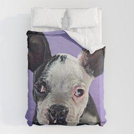 Super Pets Series 1 - Super Bugsy 2 Comforters