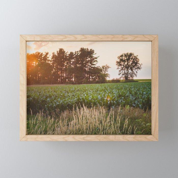 Sunsets and Corn Fields Framed Mini Art Print