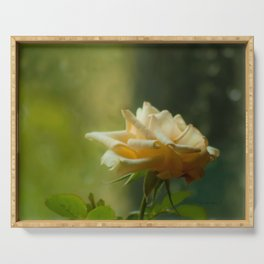 Yellow Rose Soft Rainy Day by CheyAnne Sexton Serving Tray