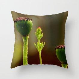 Poppy of Troy or Opium Poppy Throw Pillow