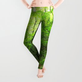 Forest 6 Leggings