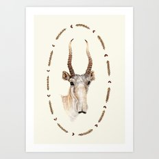 The Saiga Antelope Art Print