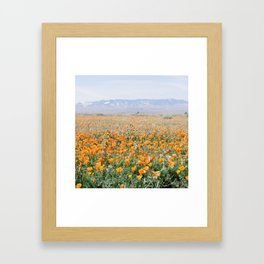 antelope valley Framed Art Print