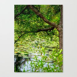 Tranquility Base, 2018 Canvas Print