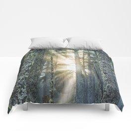 Filtered Light Comforters