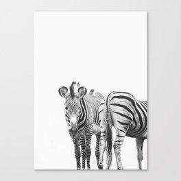 Zebra Duo - Wild Zebras Animal Travel photography by Ingrid Beddoes Canvas Print