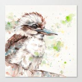 A Kookaburras Gaze Canvas Print