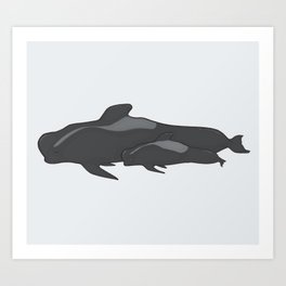 Pilot Whale Mother And Calf Art Print