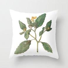 Impatiens Capensis Throw Pillow