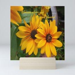 Blossom Where You Are Planted Mini Art Print