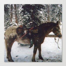 Winter Work Canvas Print