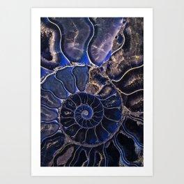 Earth Treasures - Ammonite in blue tones Art Print