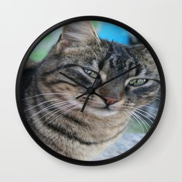 Inquisitive Tabby Cat With Green Eyes  Wall Clock