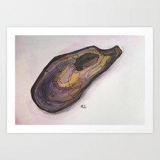 .shell II Art Print