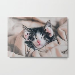 Paws Up For Naptime! Metal Print