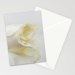White Rose with Unfolding Petals Photograph Stationery Cards